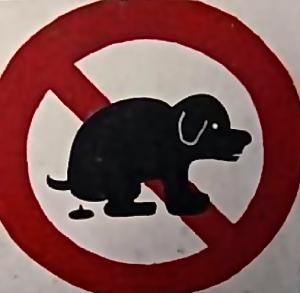 dogpooping